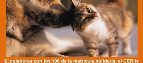 Matrícula Solidaria